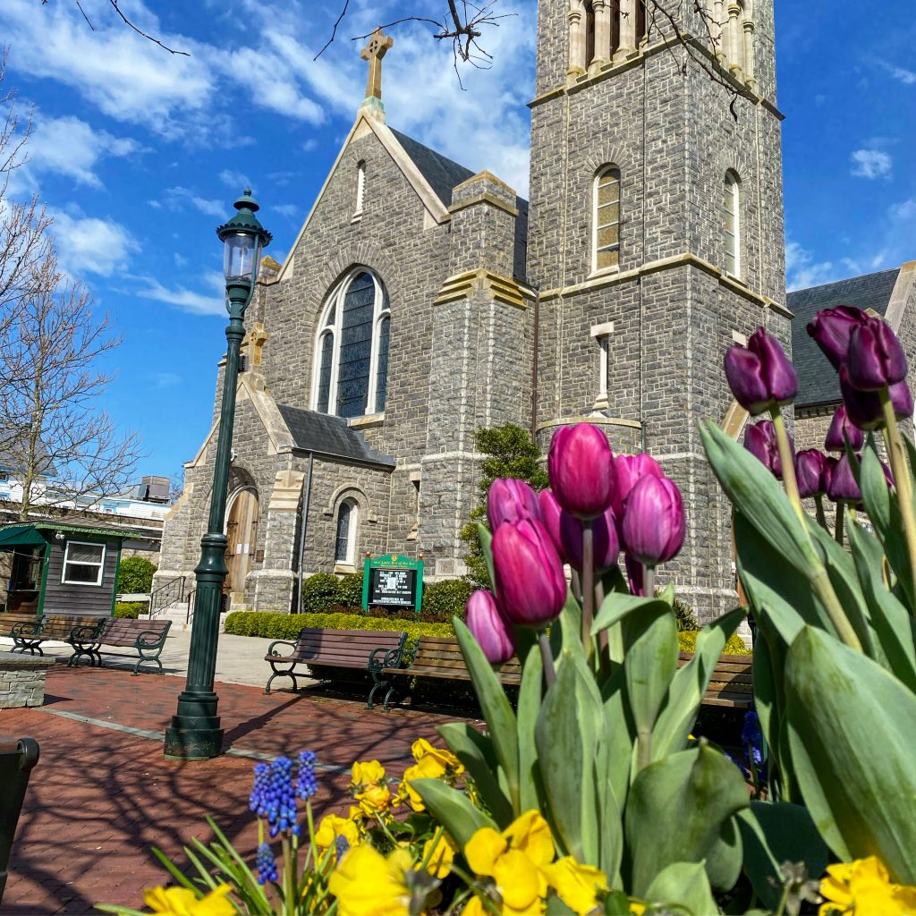 Spring in Cape May