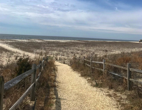 Walking Trails in Cape May